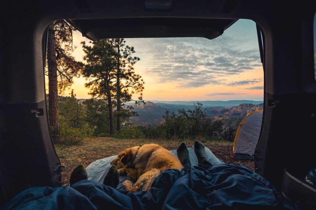 A dog and owner watch the sunset from inside one of the best RV brands.